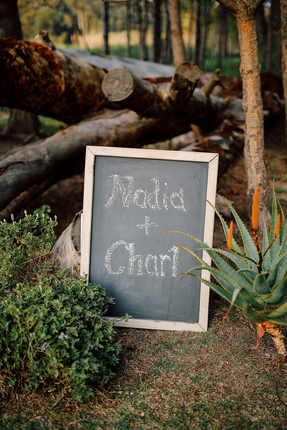 Nadia&Charl {Married@Winery Road Forest, R44}-2008